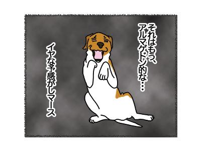 22032018_dog3.jpg