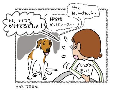 22032018_dog4.jpg
