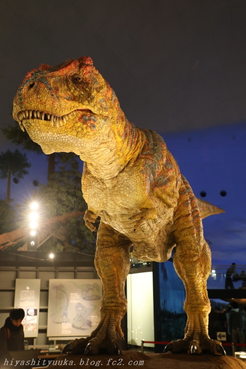 6584 恐竜博物館ーSN