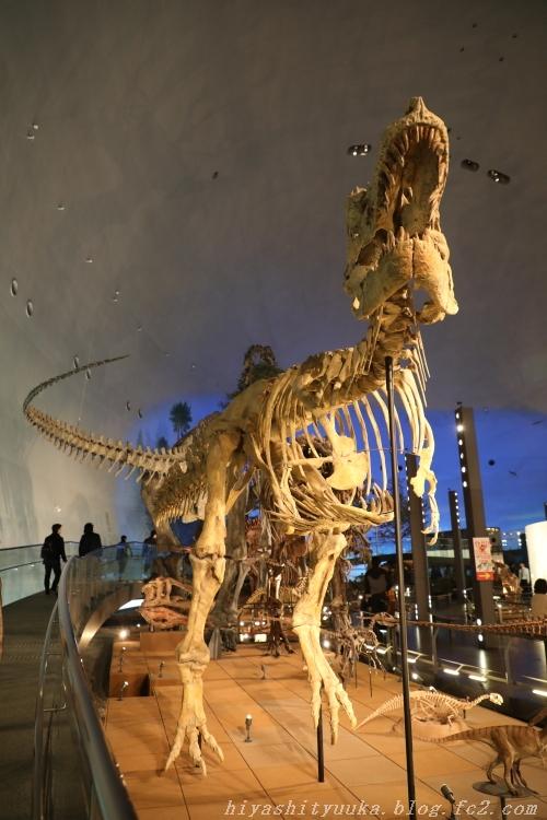 6616 恐竜博物館-SN