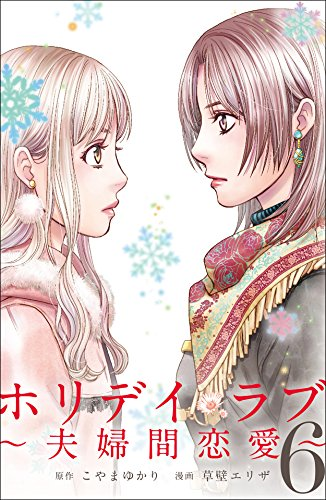 不倫漫画ホリデイラブ夫婦間恋愛の単行本6巻