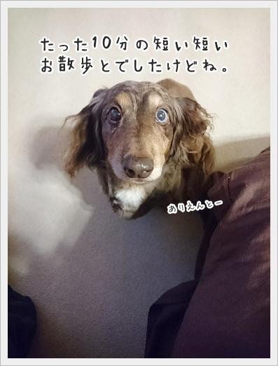 fc2_2018-03-01_06.jpg