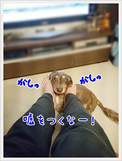fc2_2018-03-01_07.jpg