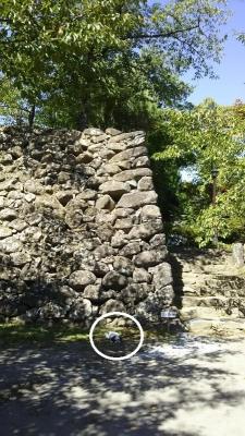 懐古園 キャバマル