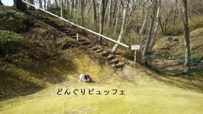 ワンコと那須旅行ゴルフ