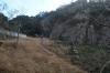 鸚鵡岩全景