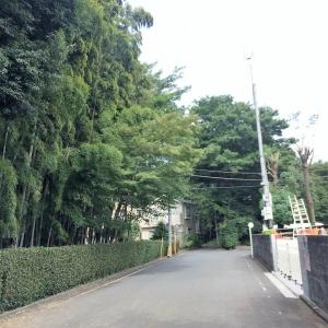 2017一橋学園界隈 (16)
