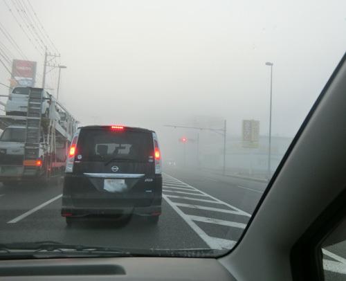 朝から、霧がすごいのなんの!