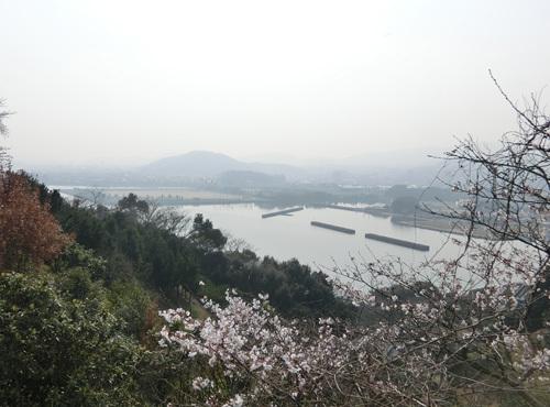PM2.5が・・・、