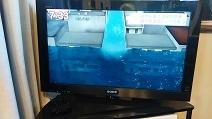 河川津波モデル