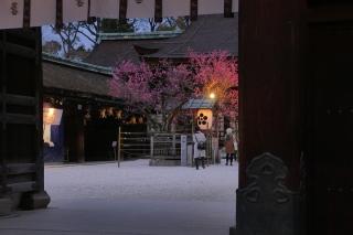 180309kitano(5).jpg