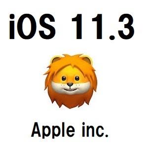 086_iOS_11 3_log2
