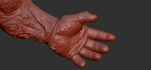 kk-hand-3dimage-01.jpg