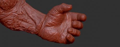 kk-hand-3dimage-02.jpg
