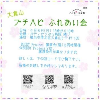 大倉山0408-350