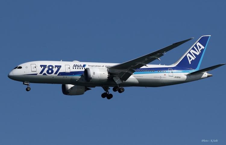 C-1463.jpg