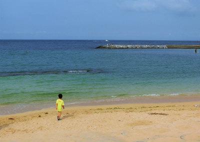 アメビレのビーチ-crop