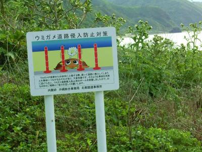 ウミガメ柵