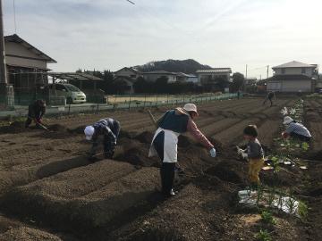 30年体験農園スタート