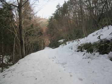 薬師山への道1
