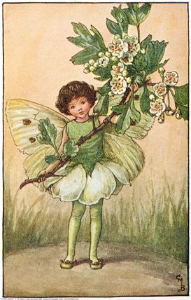 2ade6e673e420189b89f864f9cb45048--flower-fairies-a-girl.jpg