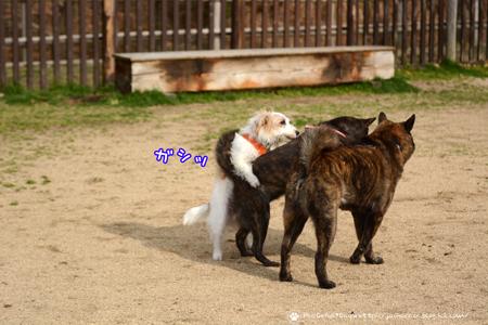 180307_yuasa12.jpg