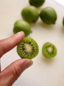 Kiwi-berry-2