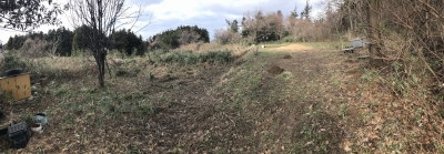 畑となっている郭跡らしき地形