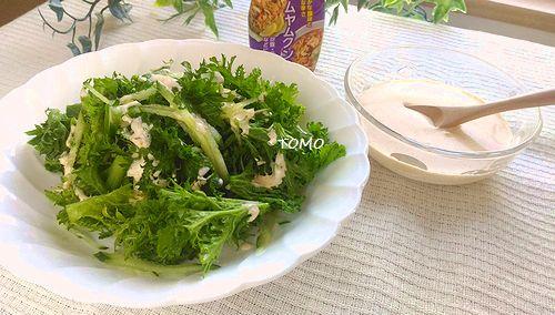 トムヤククンソースとグリーンサラダ