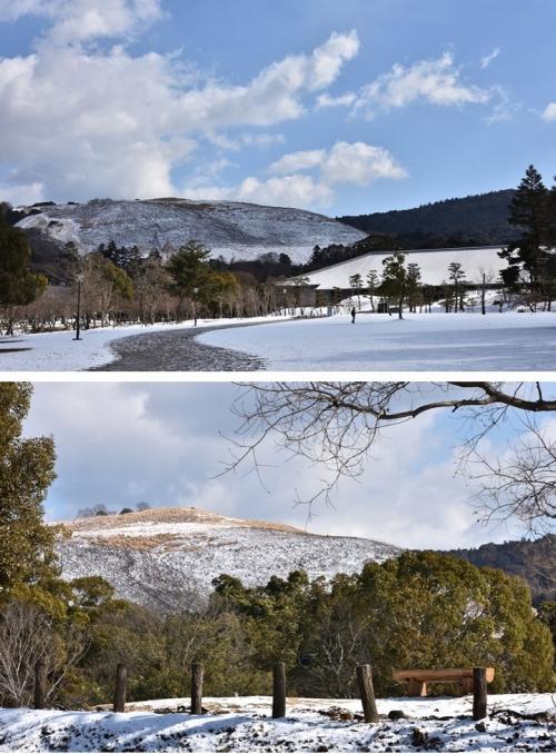 若草山の雪