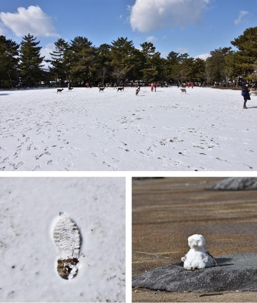 雪原と雪だるま