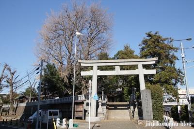 代田八幡神社(世田谷区代田)1