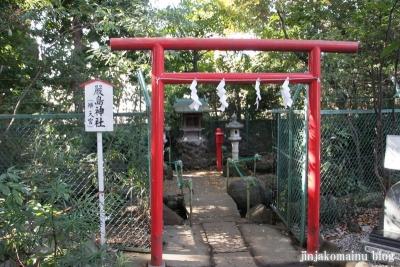 赤堤六所神社(世田谷区赤堤)30