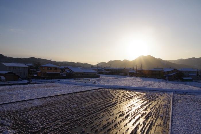 氷漬けの朝