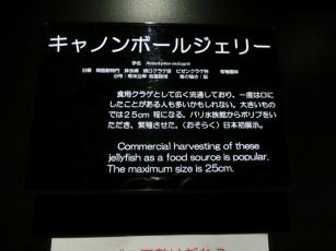 18.02.10 山形、秋田旅行 020