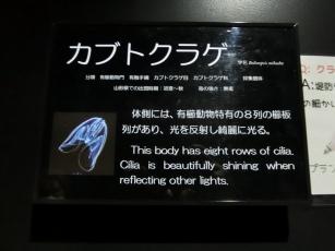 18.02.10 山形、秋田旅行 016