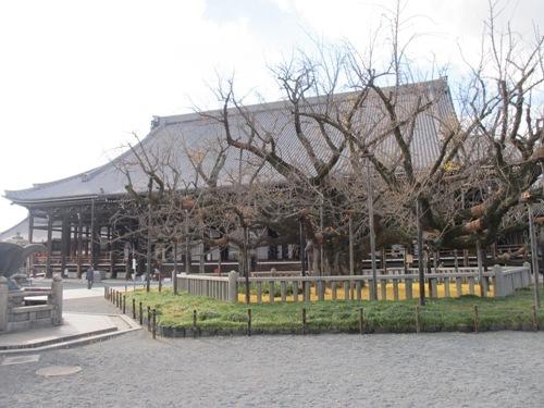 東寺・本願寺 (81)