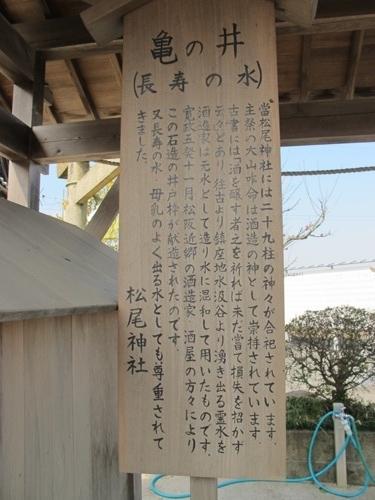 初午松阪 (41)