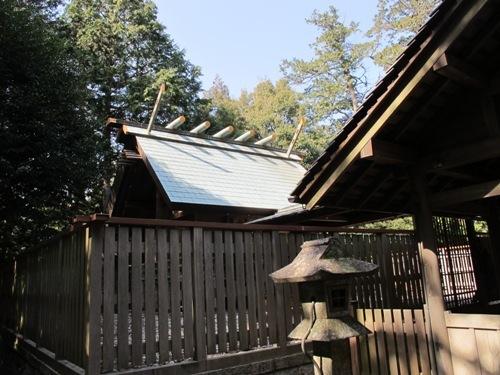 初午松阪 (58)