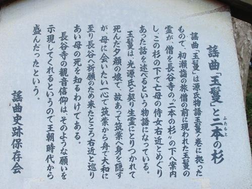 初瀬の里 (142)