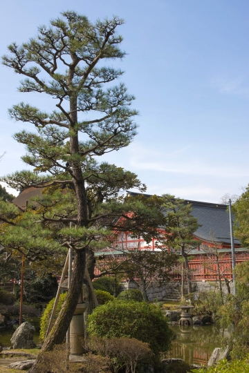 津島神社 05