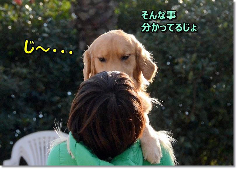 DSC_5549じ~・・・
