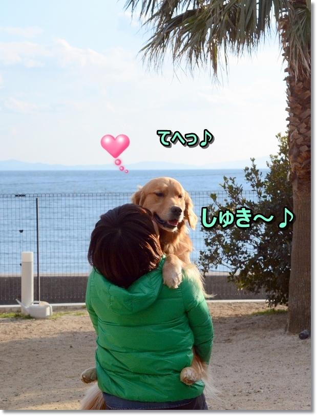 DSC_5550しゅき~♪