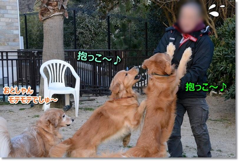 DSC_5689抱っこ~