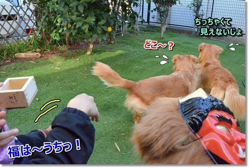 DSC_6301福は~うち!