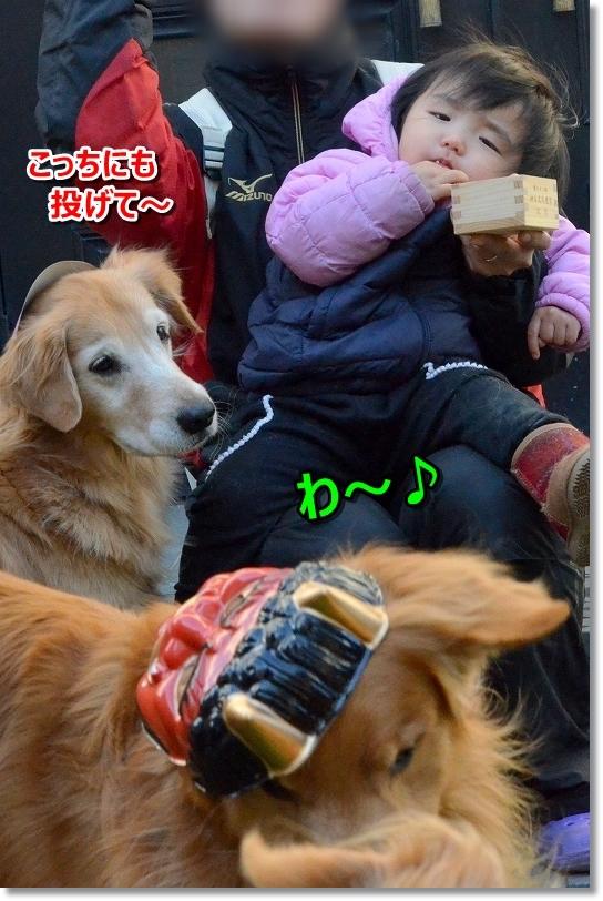 DSC_6342わ~♪