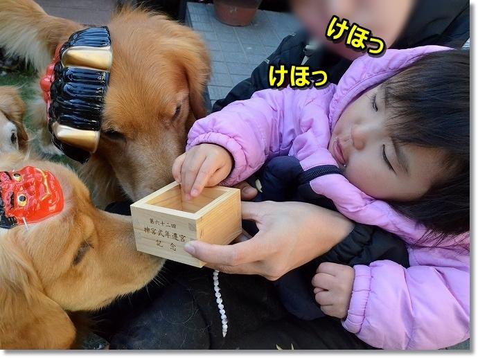 DSC_6362?? ケホケホ - コピー