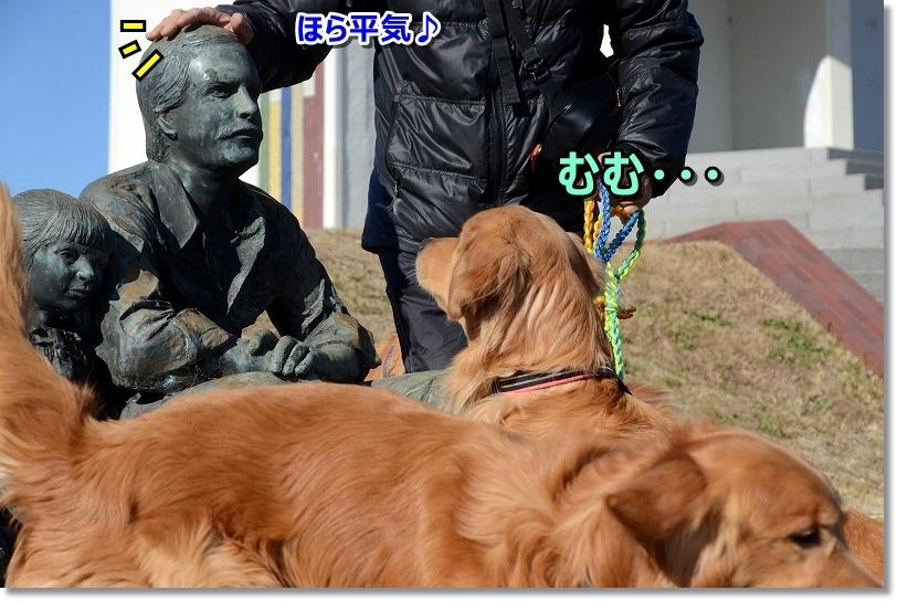 DSC_5802むむ・・・