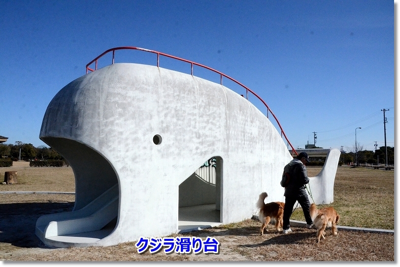 DSC_5884クジラ滑り台