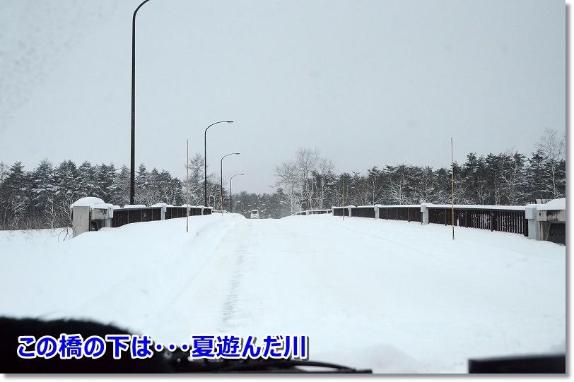 DSC_6965橋の下は川・・